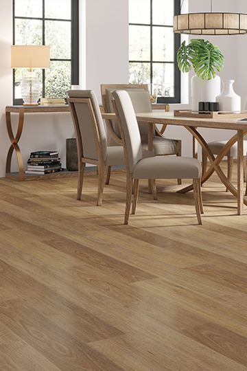 Brumby Lux – Spotted Gum